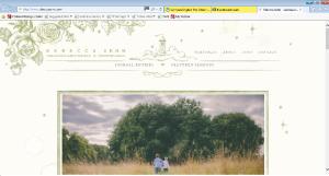 rebeccasehnwebpage